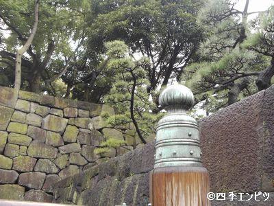 20100307 擬宝珠 4