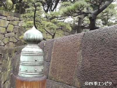 20100307 擬宝珠 5
