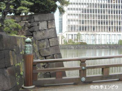 20100307 擬宝珠 6