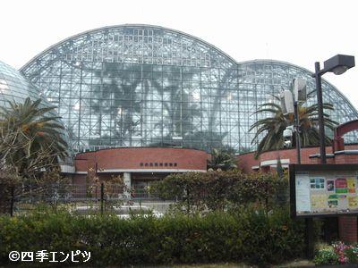 20100307 夢の島 熱帯植物館 外観