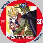 dragonballkai30.jpg