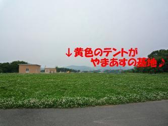 bP1150104.jpg