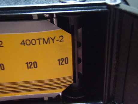 P4150020.jpg