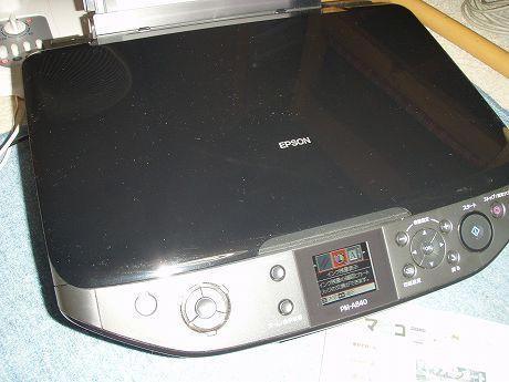 PB080001.jpg