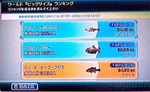 PC→ランキング→1ボタン→ワールドビッグサイズ