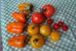 ピーマンとトマト。