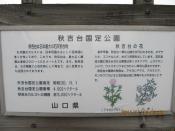 20111110004.jpg