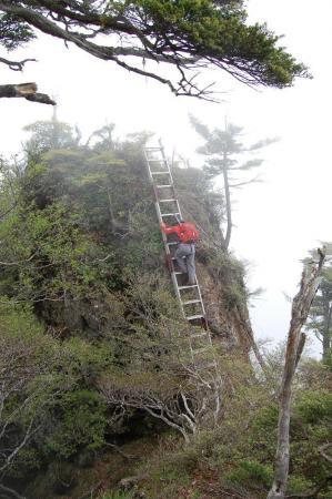 梯子2-37