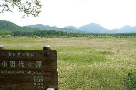 16小田代ヶ原