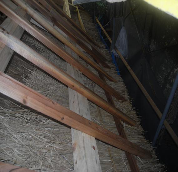 茅の垂木丸太