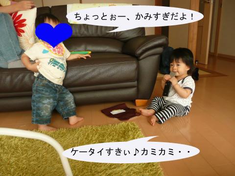 P1050204_convert_20101008221428のコピー