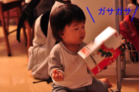 DSC_6502_convert_20101009222753のコピー