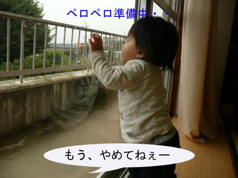 P1050368_convert_20101021213445のコピー