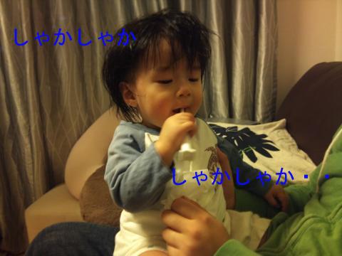 DSC_0076_convert_20101112223605のコピー