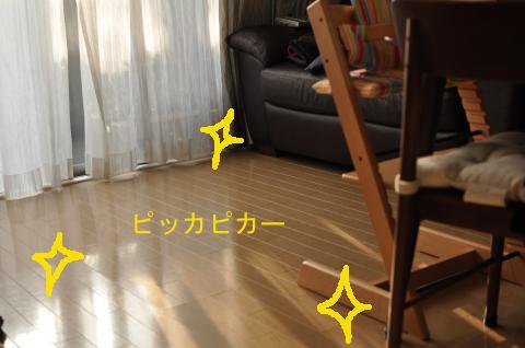 DSC_7702_convert_20101230223221のコピー