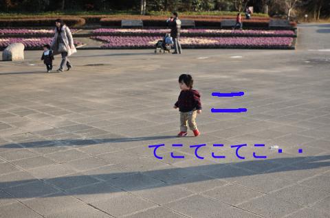 DSC_8453_convert_20110213232757のコピー