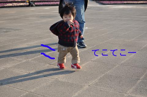 DSC_8456_convert_20110213233053のコピー