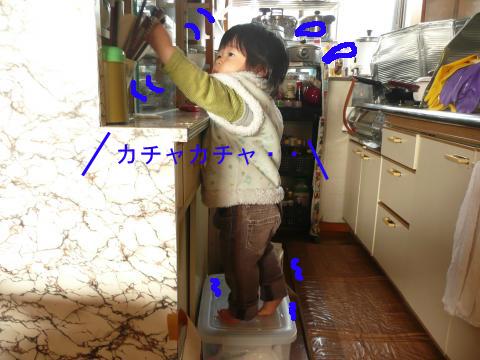 P1060008_convert_20110217224612のコピー