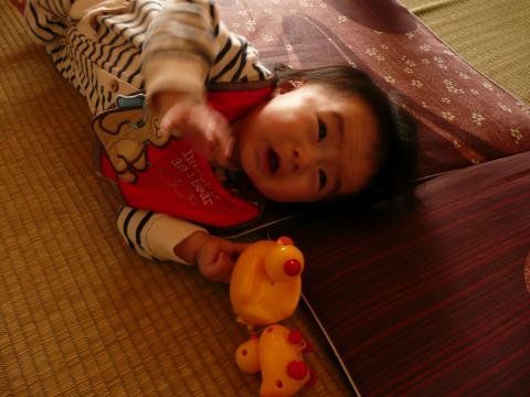 P1030466_convert_20100513225339.jpg