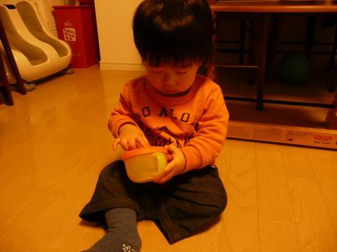 P1050518_convert_20101103213026.jpg