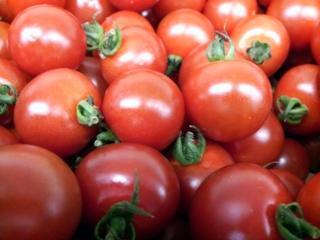 ミニトマト 完熟05