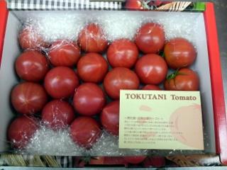 トマト 徳谷10