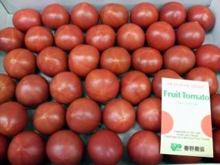 フルーツトマト 春野07