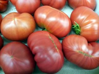フルーツトマト 有さん04