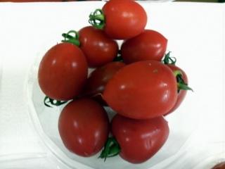 トマトベリー05