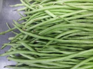 ササゲ豆11