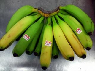 青バナナ19