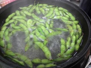 枝豆 だだっちゃ豆09