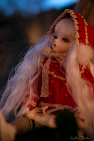 doll20141116005.jpg