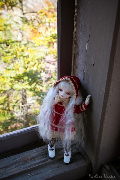 doll20141116017.jpg