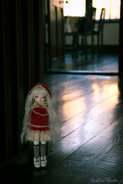 doll20141116020.jpg