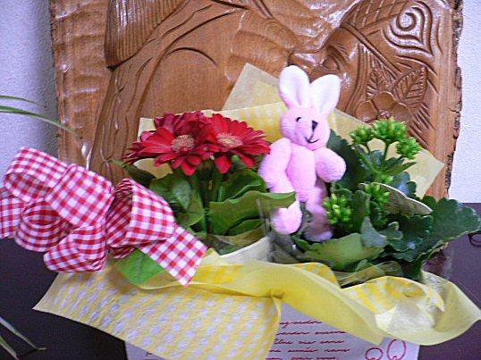 お花P1040683