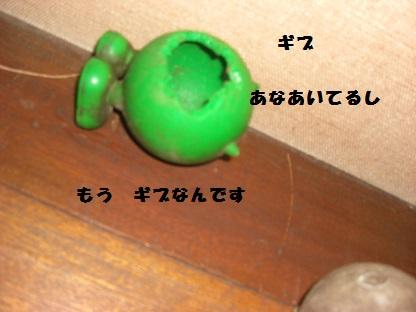 CIMG5671.jpg