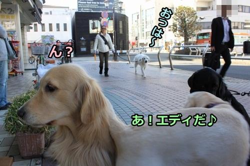 s-IMG_0482_20130324213431.jpg