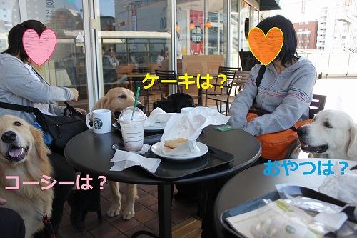 s-IMG_2586.jpg