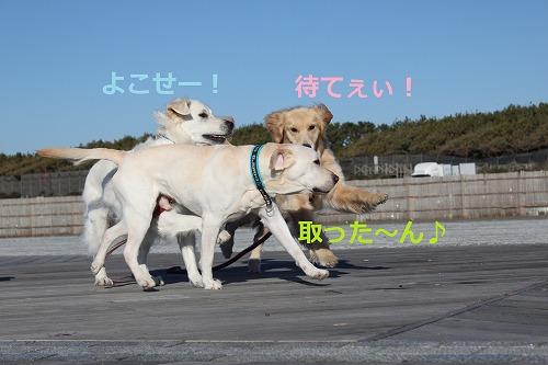 s-IMG_3157_20111226143618.jpg