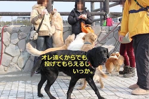s-IMG_4530_20120222224254.jpg