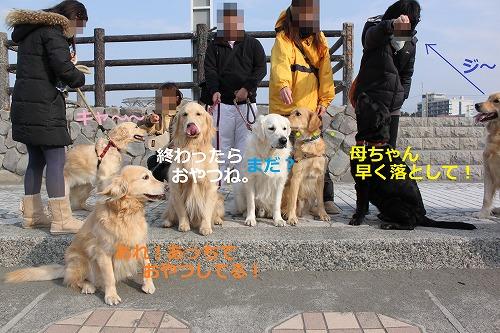 s-IMG_4533_20120222224253.jpg