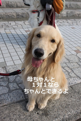 s-IMG_4539.jpg