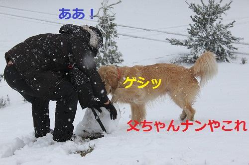 s-IMG_4644.jpg