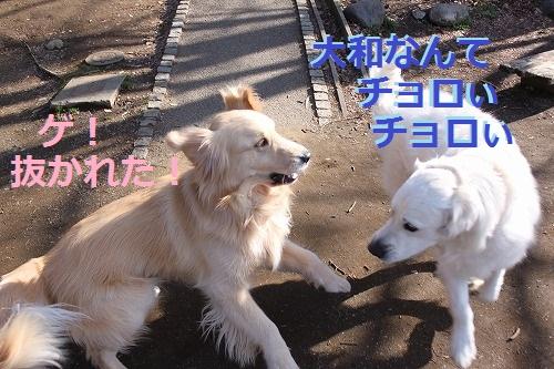 s-IMG_4695_20120316155827.jpg