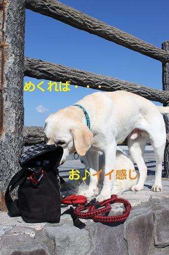 s-IMG_4768.jpg