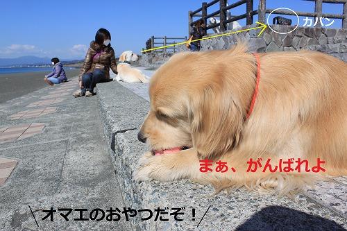s-IMG_4778_20120329205429.jpg