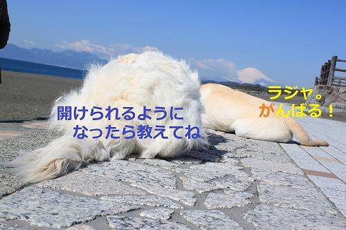 s-IMG_4782.jpg