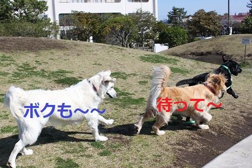 s-IMG_4874_20120405192717.jpg