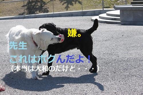 s-IMG_4882.jpg